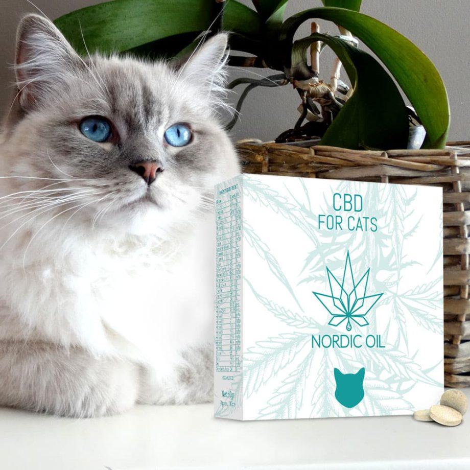 CBD-Tabletter För Katter (Ej översatt)