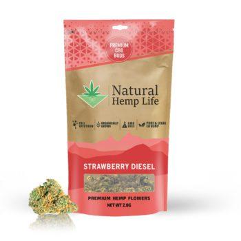 Strawberry Diesel – Premium CBD Buds